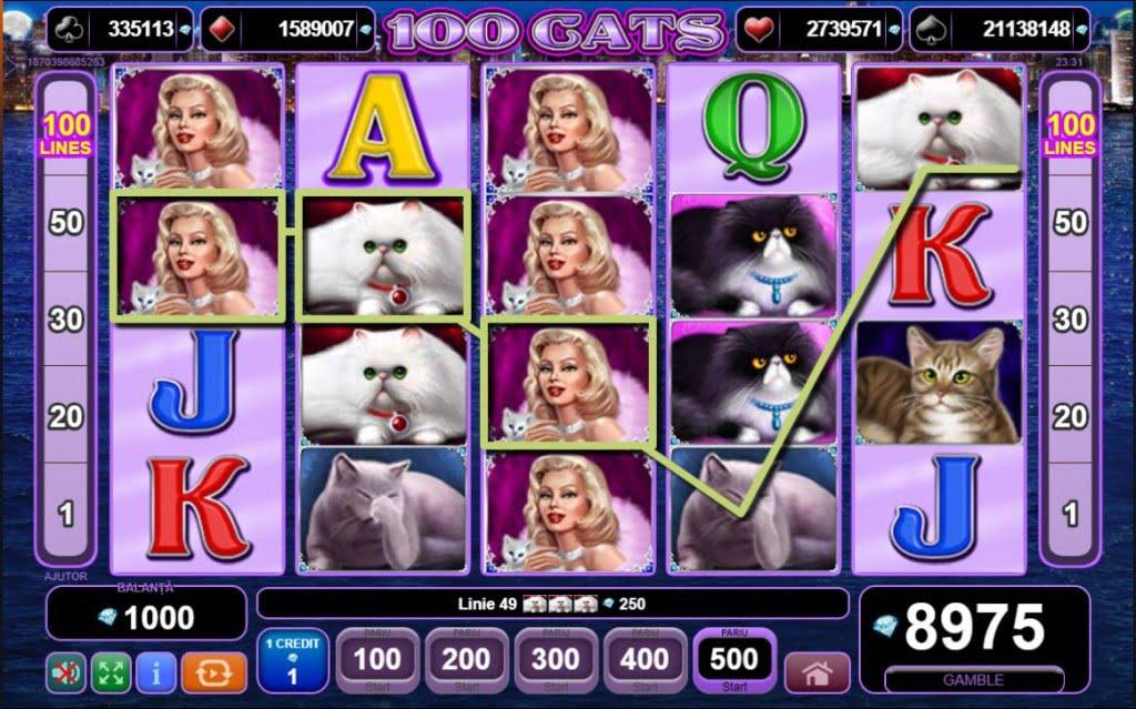 mega castig 100 cats